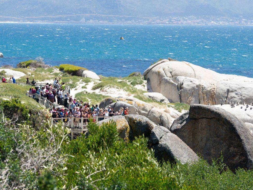 Menschenmassen auf den Holzstegen auf der Kap-Halbinsel