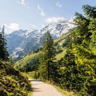 Grandioser Blick auf die Deutschen Alpen, Purtscheller Haus Wanderweg