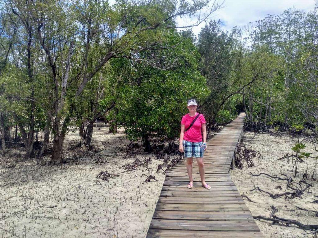 Holzsteg über Mangroven auf Curieuse Seychellen