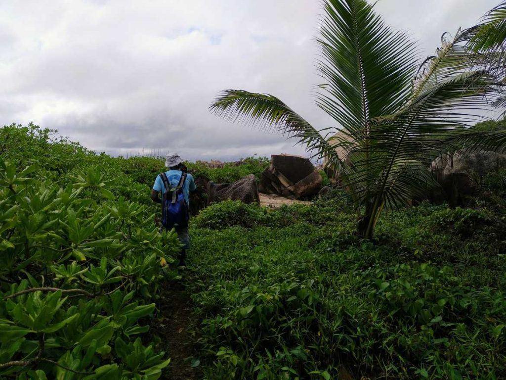 Tour zur Anse Marron auf La Digue Seychellen