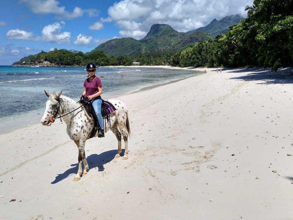 Stute Yazela am Strand in der Nähe vom Avani Hotel auf Mahe Seychellen