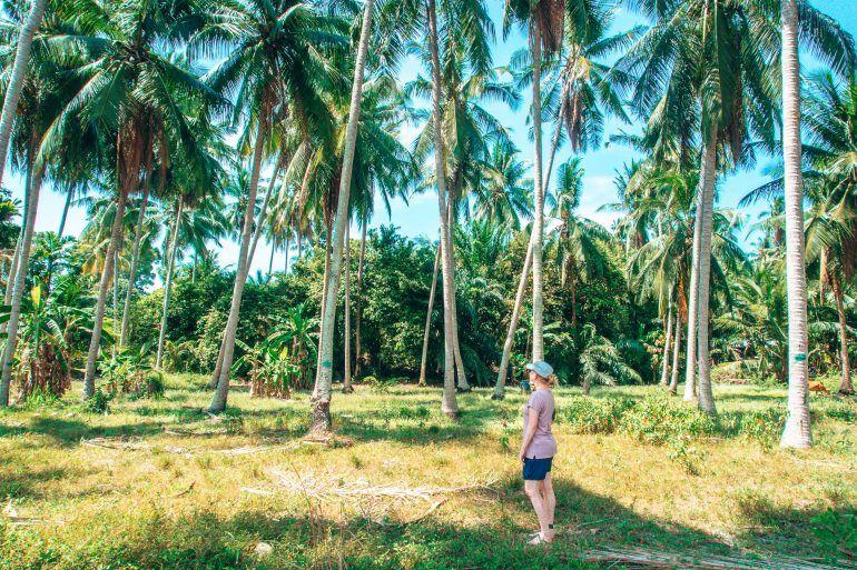 Sandra auf Koh Samui im Palmenwald