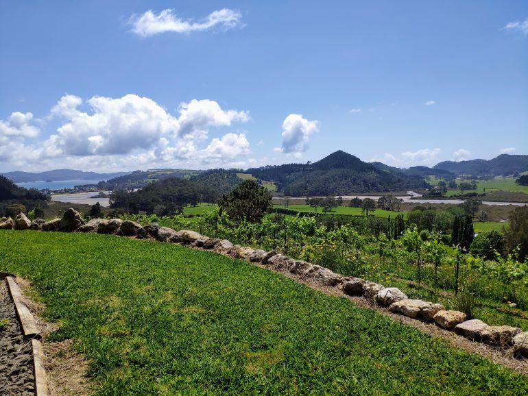 Purangi Winery Coromandel Peninsula Neuseeland